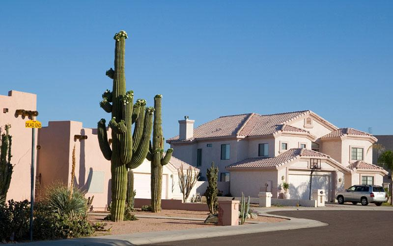 Palm Valley Homes for Sale